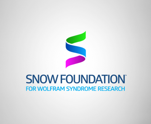 The Snow Foundation
